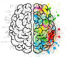Piirroskuvassa on aivot, joiden vasemmanpuoleinen lohko on mustavalkoinen ja täynnä matemaattisia kaavoja. Oikeanpuoleinen aivolohko on täynnä värikkäitä maaliläiskiä ja -roiskeita.